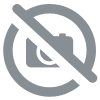 Alphanumeric display parallel control <br> BLET <br> Ref : AFG28-B09E1-00